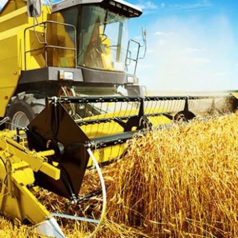 Blockchain in de agrarische wereld